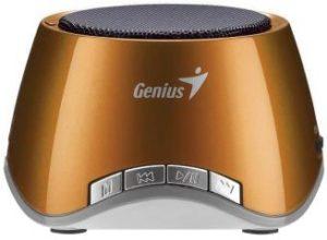 Genius SP-I320 Portable Music Player with Speaker (Bronze)