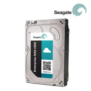Seagate 6TB Enterprise NAS HDD (SATA 6Gb/s 128MB Cache)